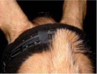 Мех и гели под седло Мех под капсуль и затылок Mattes