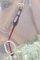 Цепочки, резинки, ремни Ремни для скользящего трензеля Dyon