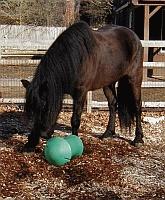 Игрушки для лошадей Игрушка интеллектуальная для левады HP Amazing Graze