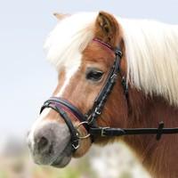 Трензельные Оголовье трензельное Star кожа, черное, роза, сердечки р. Pony